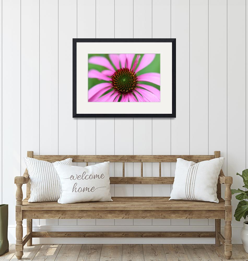 """Purple Coneflower""  (2016) by KsWorldArt"