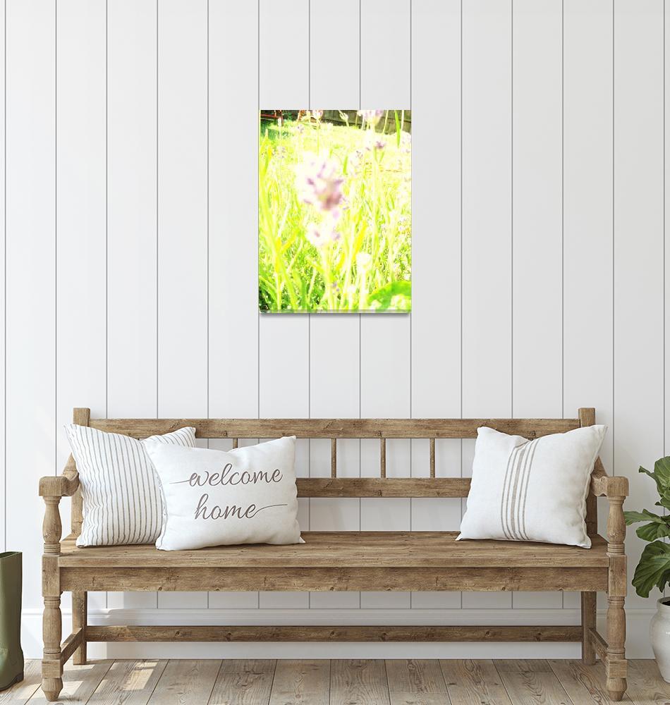 """sunshine lavendar""  (2009) by amazealice"