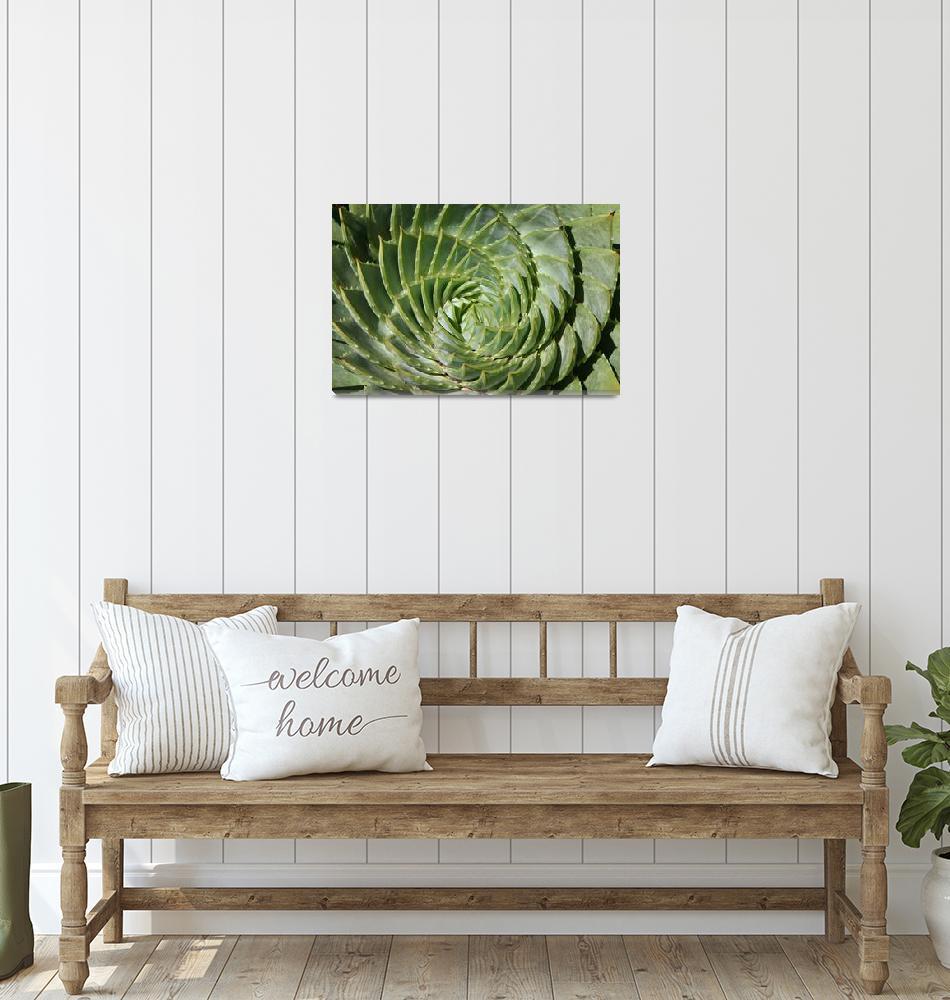 """Nature"