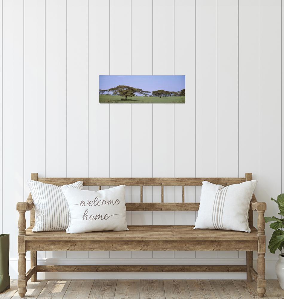 """Kenya""  by Panoramic_Images"