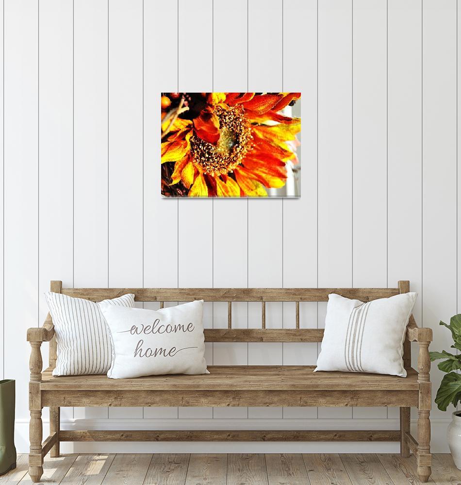 """Sunflower""  (2010) by chadcox"