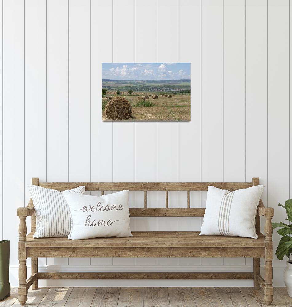 """haystack haycock hayrick  Bacau Romania""  (2018) by ovicor"