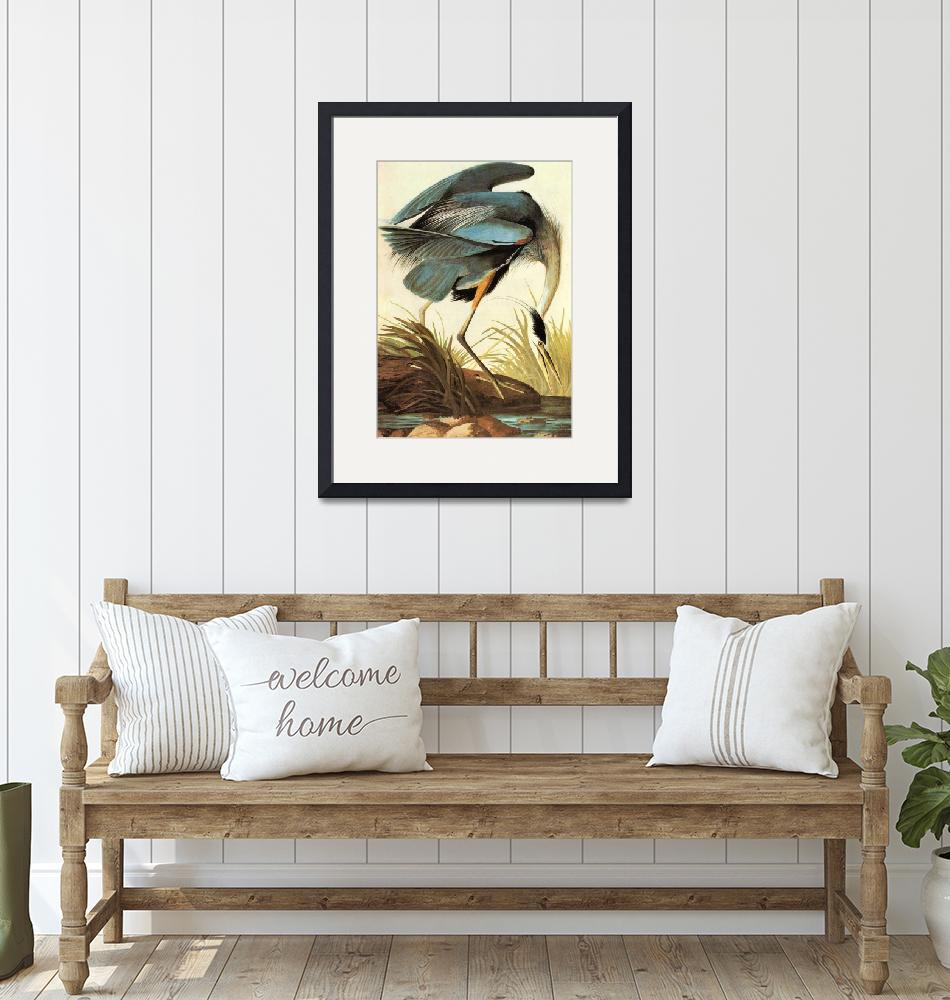 """Great Blue Heron by John James Audubon""  by motionage"