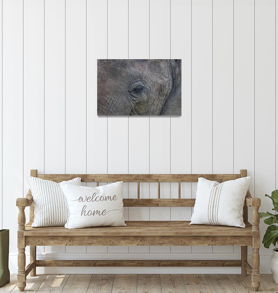 """Elephant"