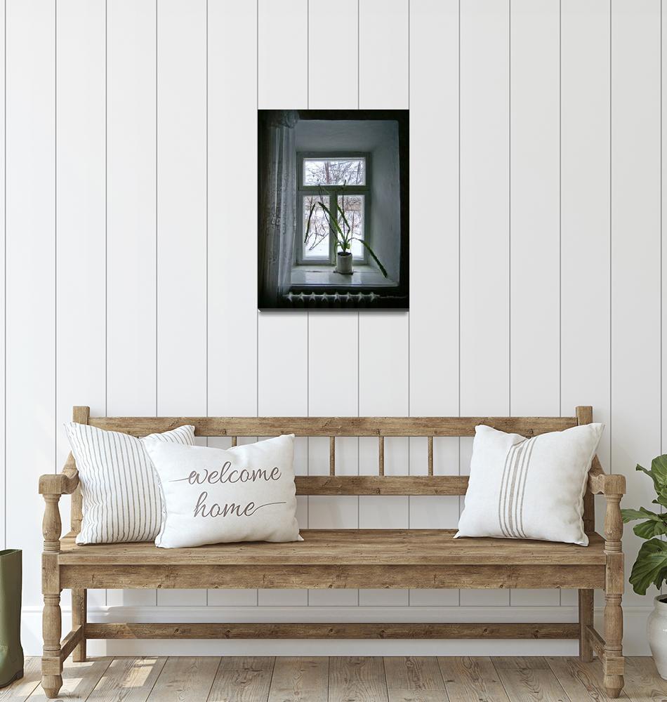 """Window.""  (2011) by Naumovka"