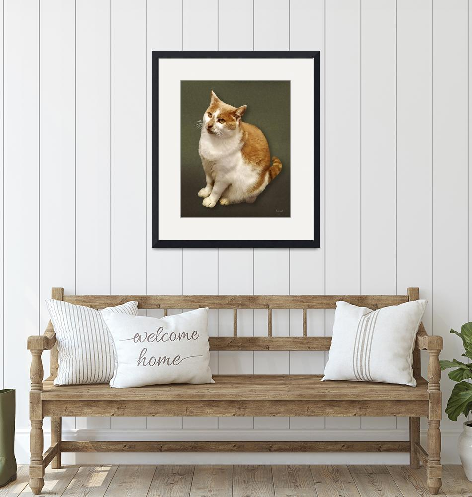 """""""Orange and White Short Haired Cat"""" by susansartgallery"""