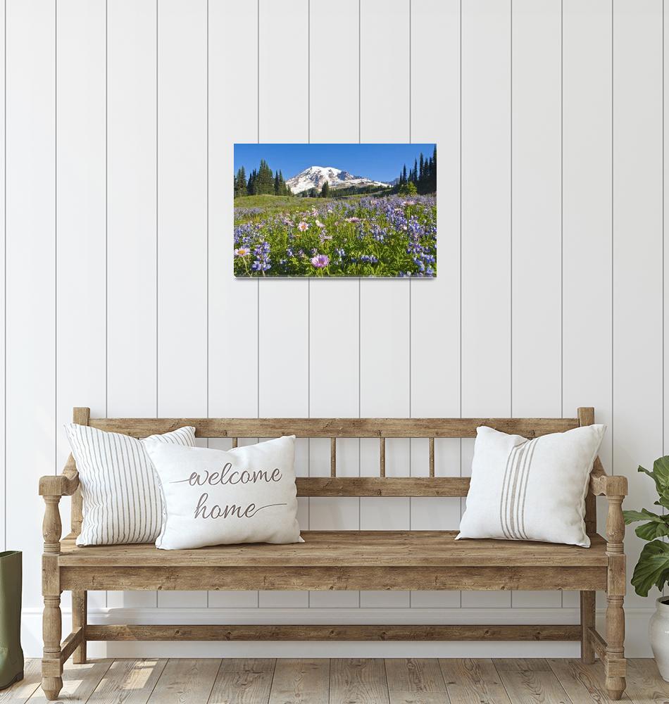 """Wildflower Meadow, Mount Rainier National Park, Wa""  by DesignPics"