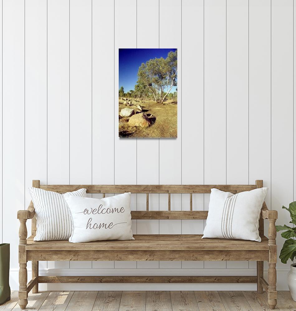 """Rocks and Trees, Australia""  (2011) by biriart"
