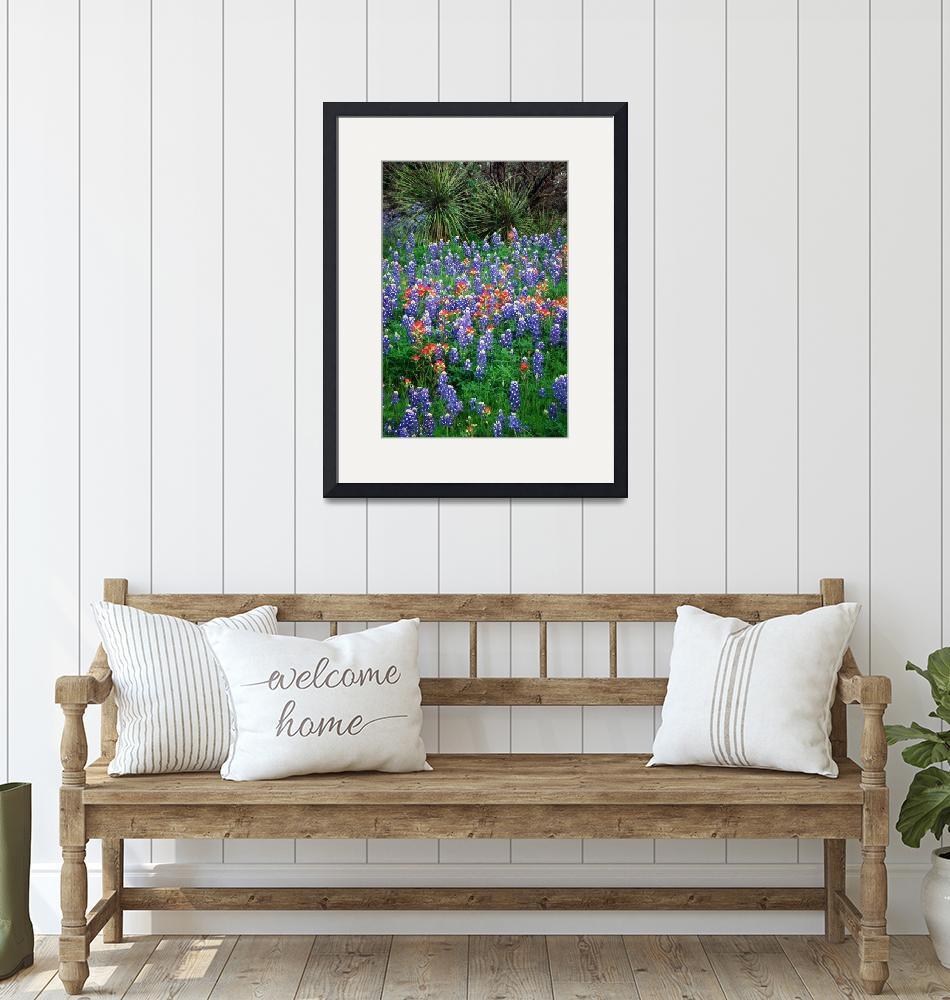 """""""Bluebonnets and Yucca""""  (2000) by Inge-Johnsson"""