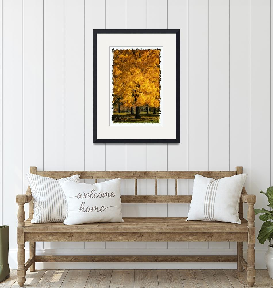 """""""LEAVES OF GOLD 2"""" (2012) by shaynaphotography"""
