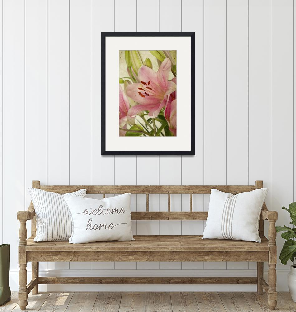 """""""Pink Lily"""" (2010) by nailiaschwarz"""
