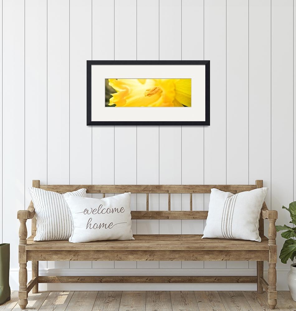 """""""The Yellow Monster""""  by danem"""