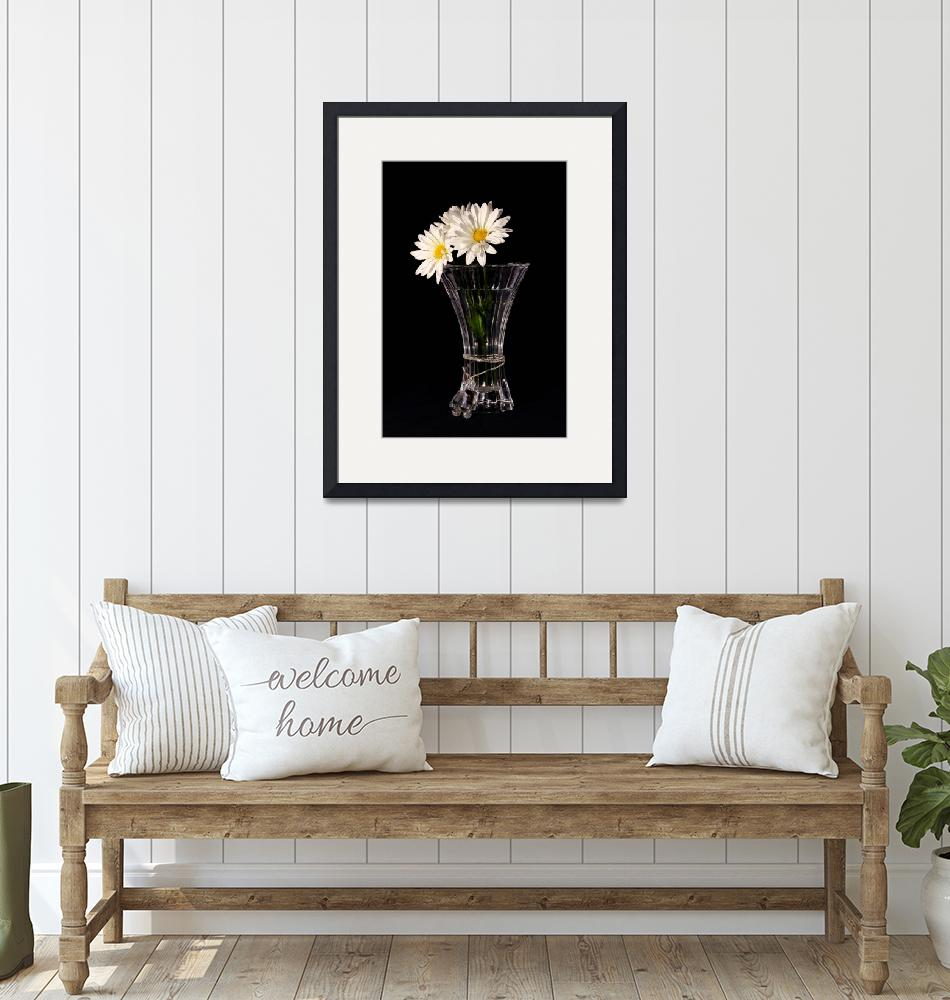 """""""Daisies In Vase""""  (2013) by PhotographyTKDesigns"""