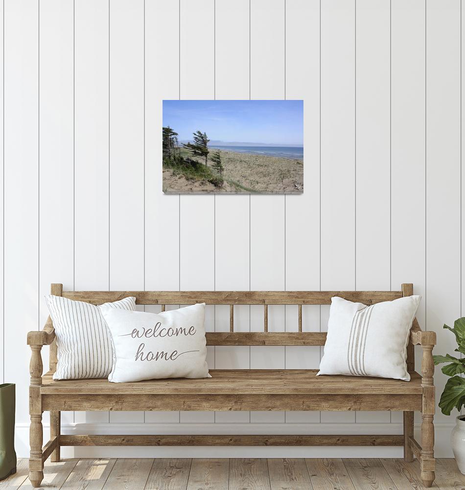 """""""Ocean, Beach, Desert 3""""  (2009) by dmarshall"""