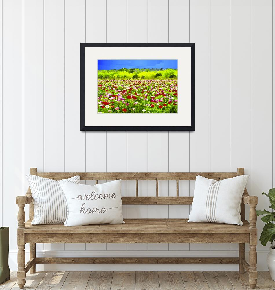 """""""Poppies Under The Texas Sky"""" by BonnieFeasterChapa"""