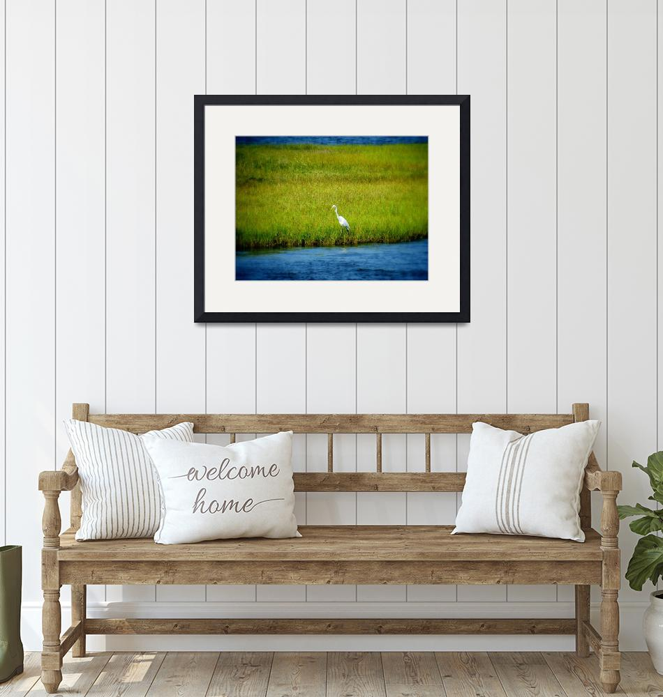 """""""Crane along the Sound (Color), Outer Banks""""  (2008) by catherinehatton"""