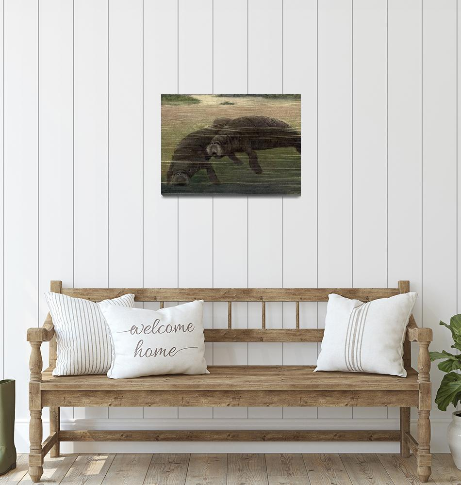 """""""Vintage Manatee Painting (1909)""""  by Alleycatshirts"""