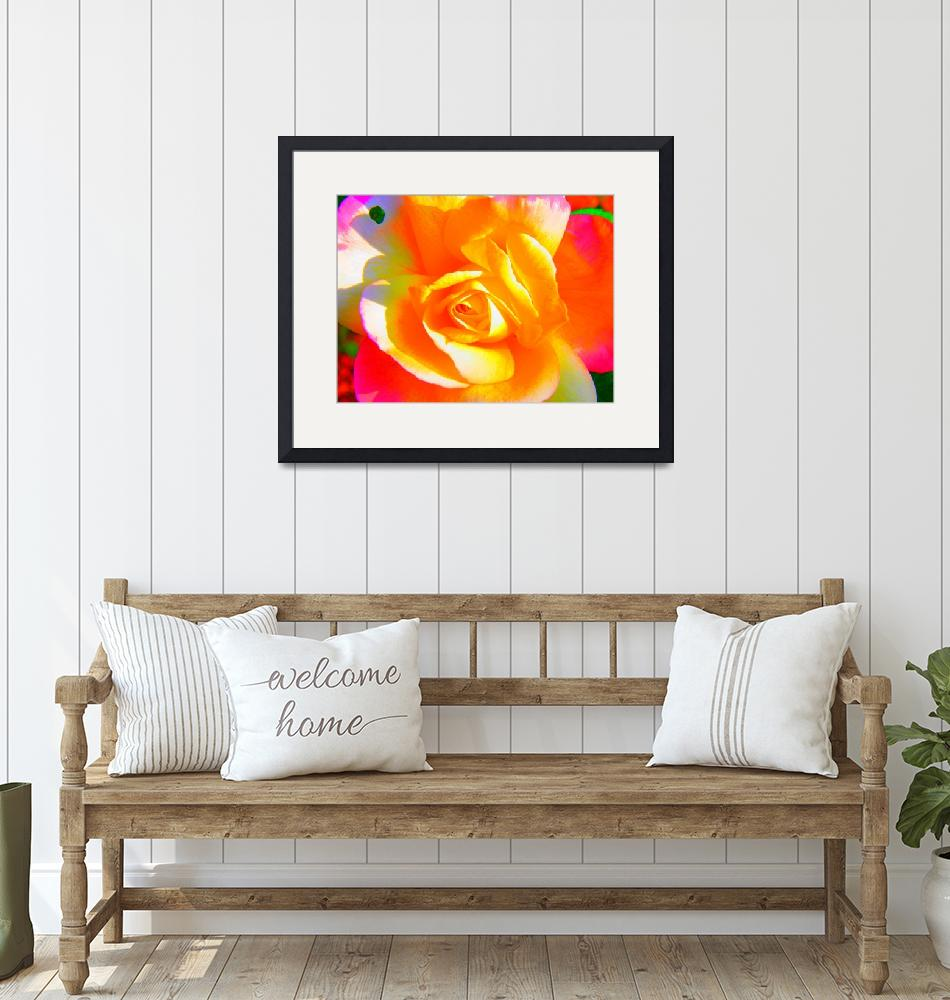 """""""bright rose""""  by summer7"""