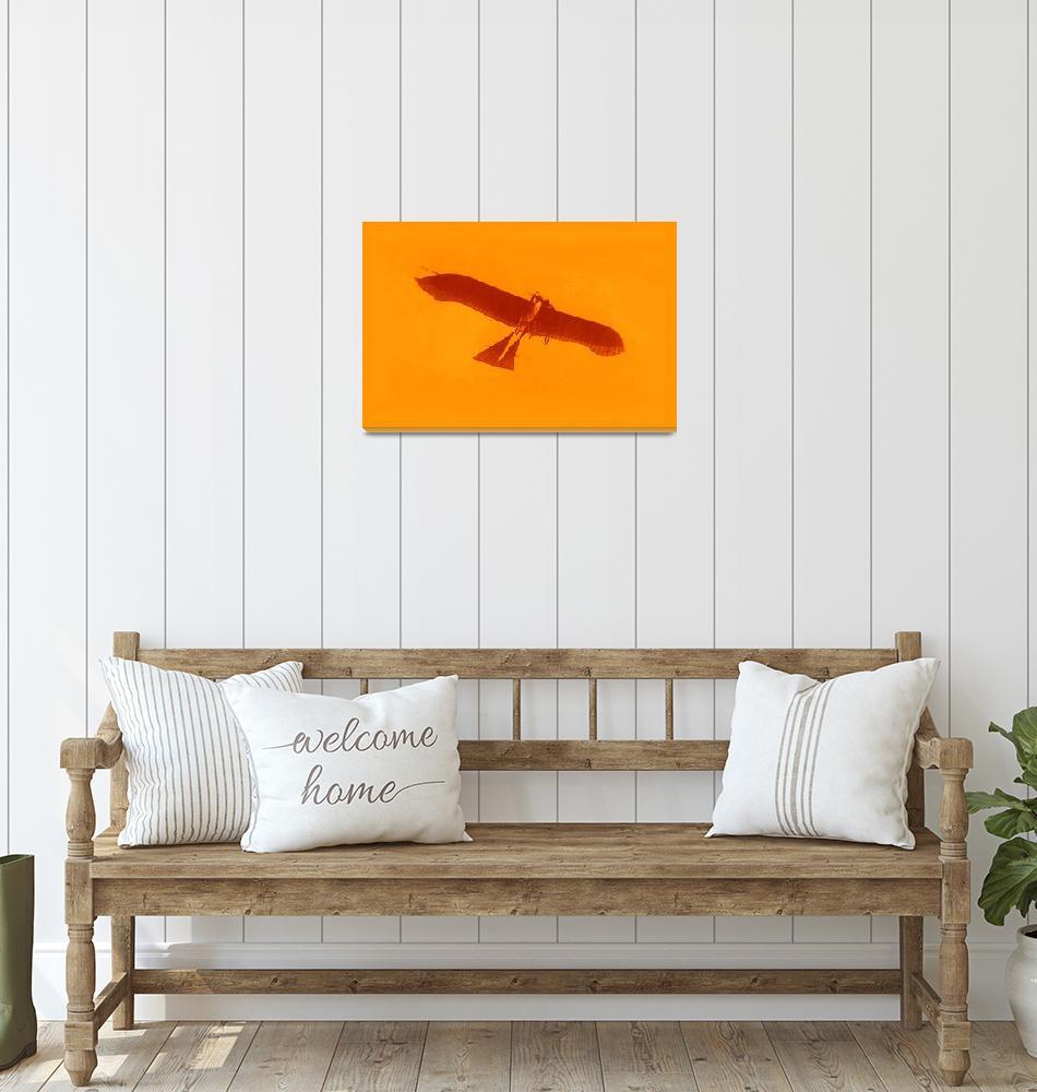 """""""1912 Etrich Taube Monoplane  medium margin""""  (2013) by TheNorthernTerritory"""