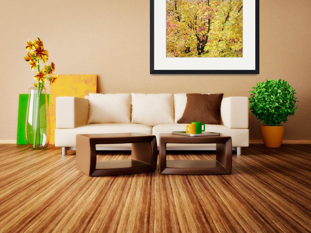 """Yellow Tree Autumn Leaves Fall Trees art prints na&quot  (2013) by BasleeTroutman"