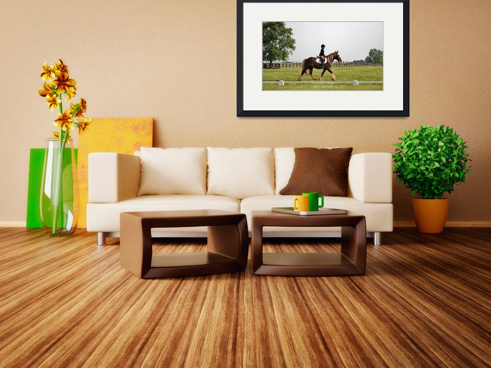 """""""© CBp Dressage Warmup""""  (2014) by creekbottomgifts"""
