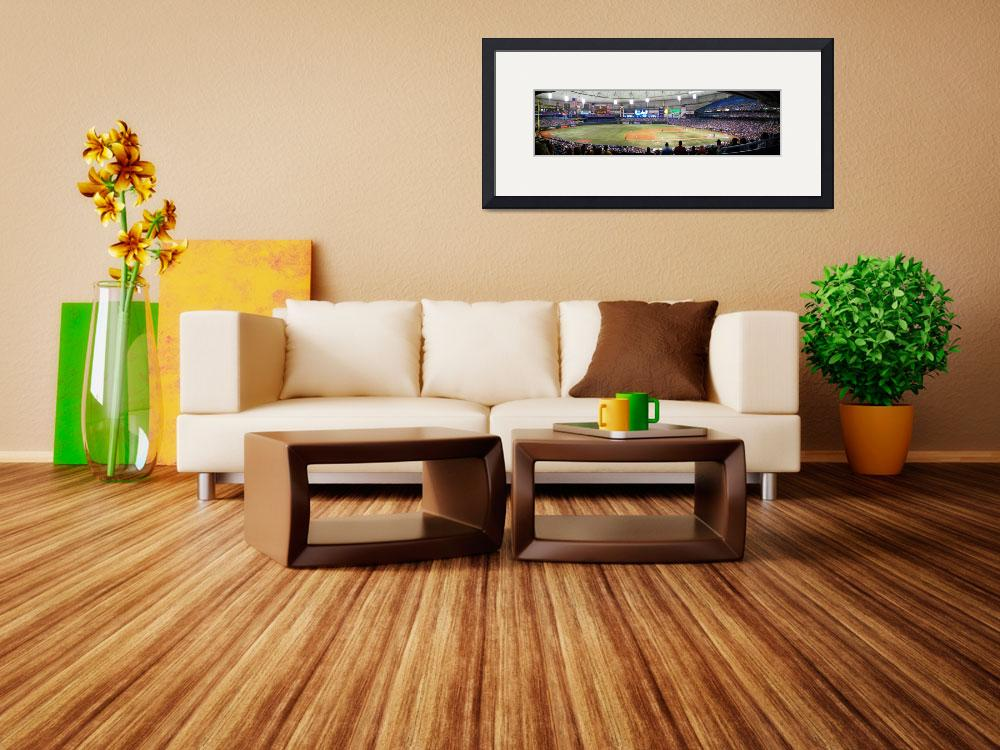 """""""Tropicana Field Panoramic&quot  (2008) by christophertaylorphotography"""