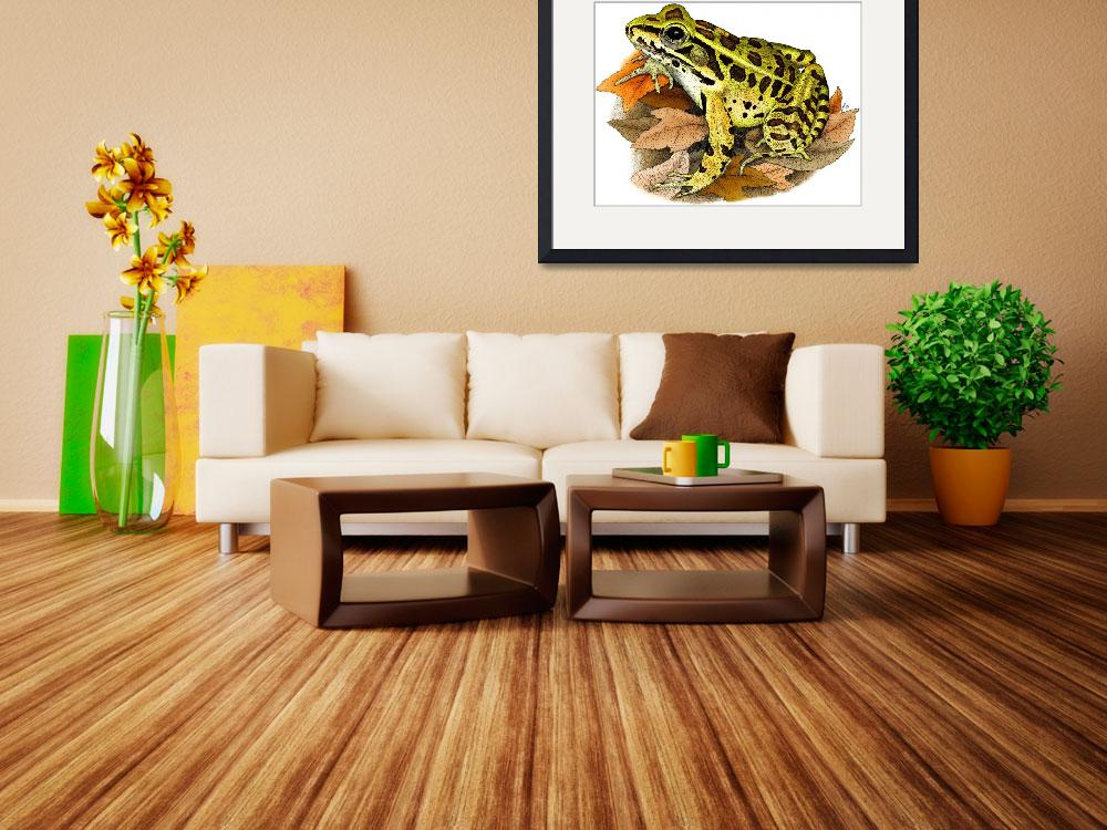 """""""Northern Leopard Frog""""  by inkart"""