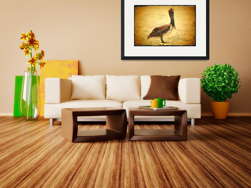 """Charming Brown Pelican with Old World Framing&quot  by Groecar"