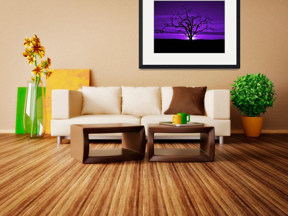 """""""Naked Tree In Purple Skies&quot  (2009) by redday"""