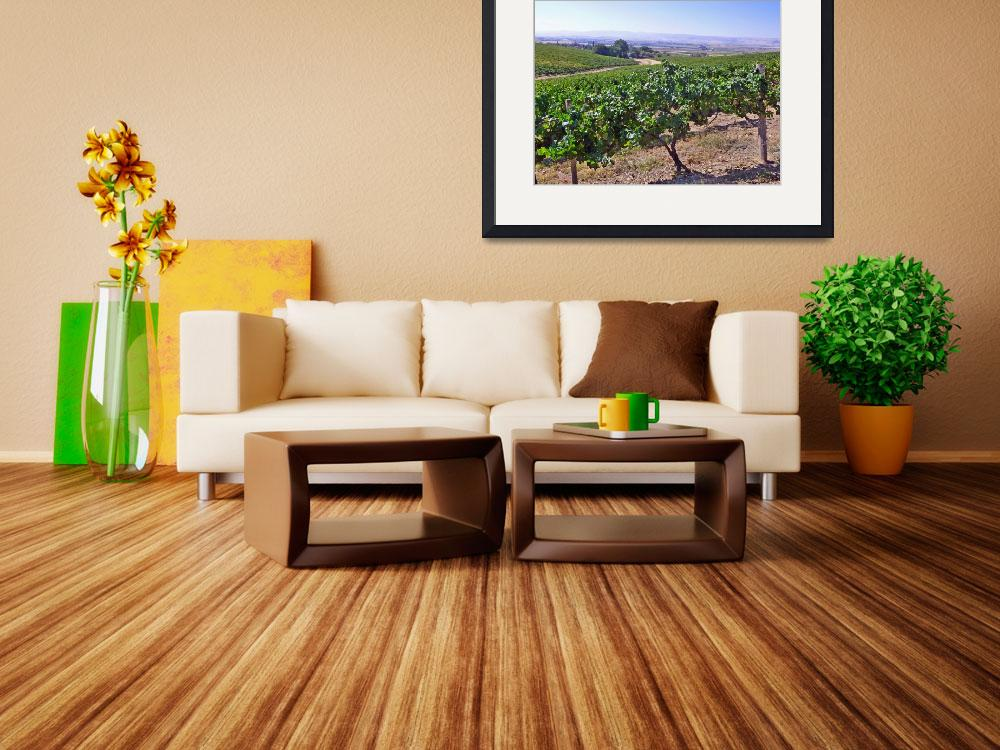 """Bitner Vineyards&quot  (2012) by joeyartist"