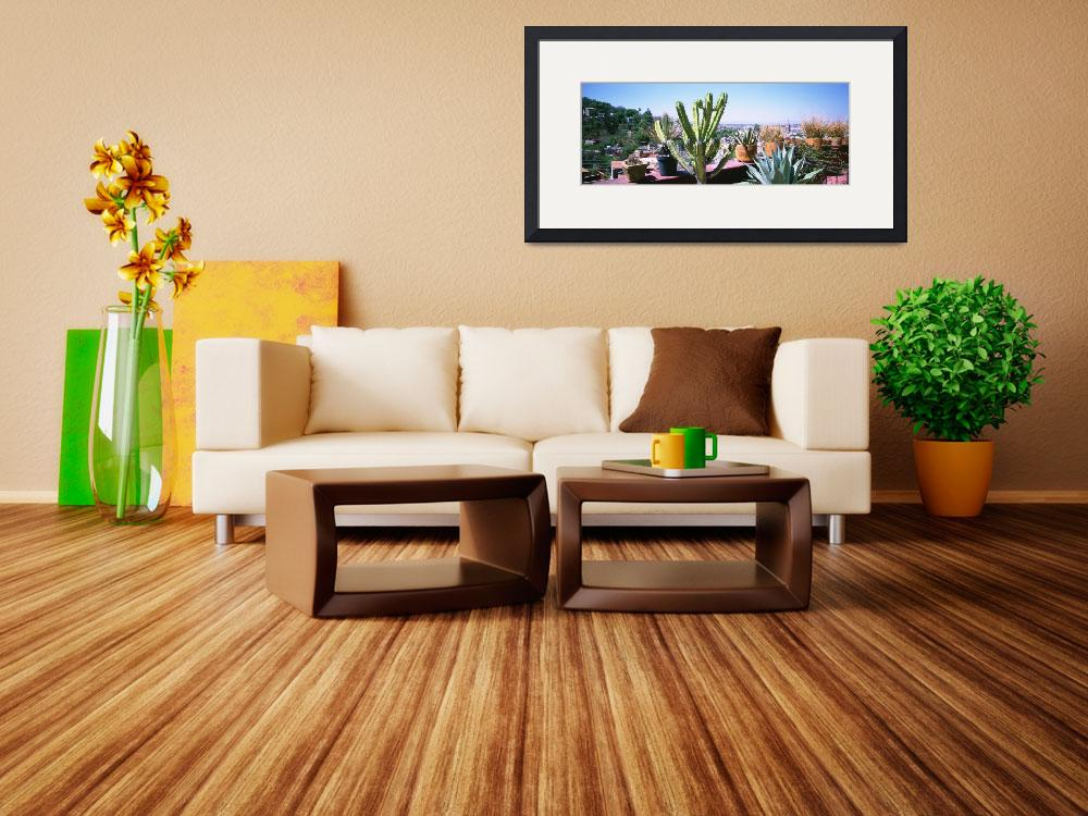 """""""Potted plants on terrace of a building with city&quot  by Panoramic_Images"""