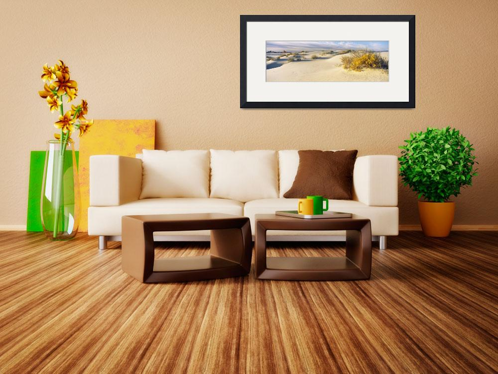"""""""Desert plants in a desert White Sands National Mo&quot  by Panoramic_Images"""