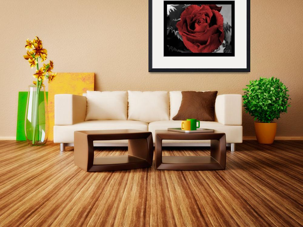 """""""red rose&quot  by LynZ"""