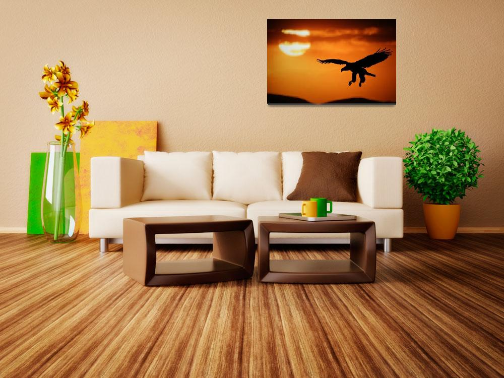 """""""Sunset eagle&quot  by RIANA"""