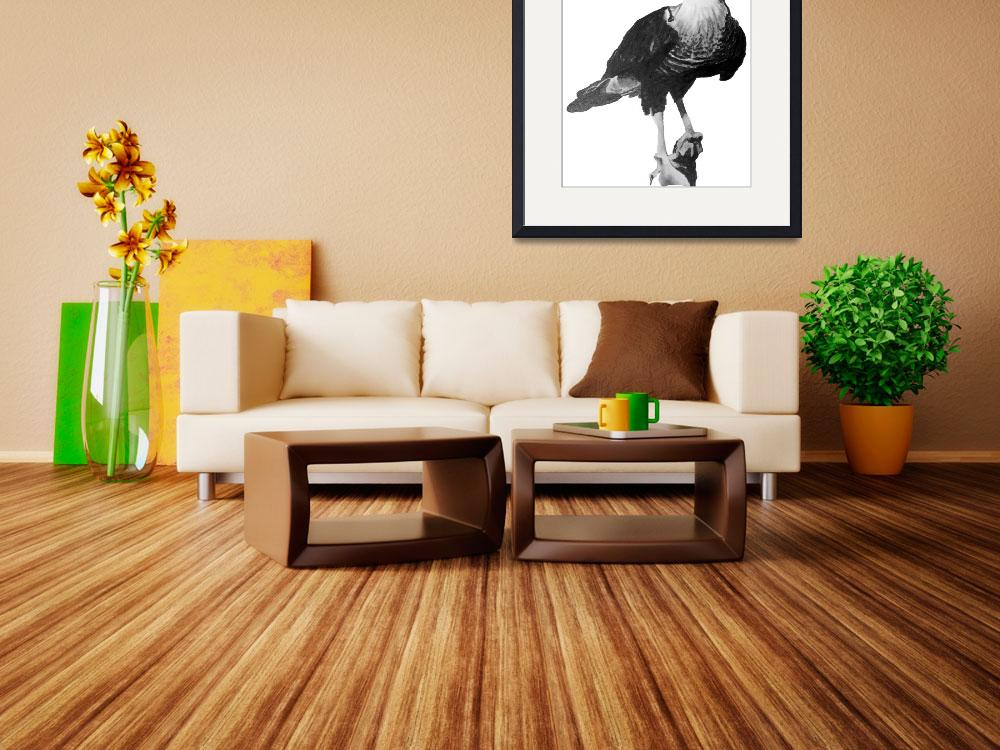 """""""Caracara - Mexican Eagle&quot  by margo"""
