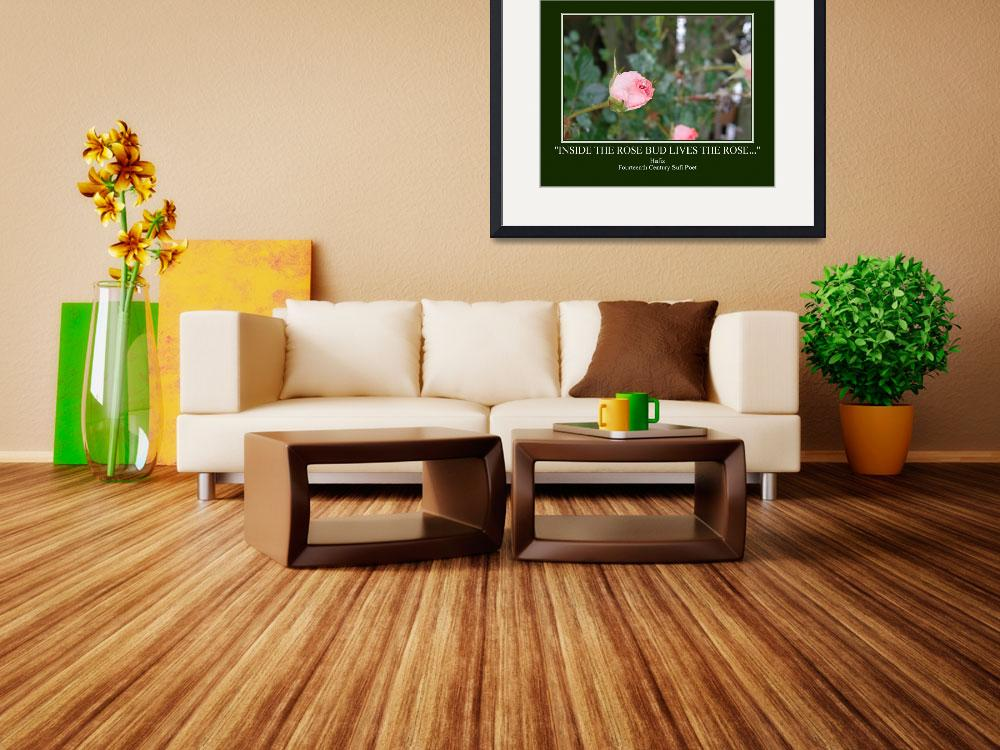 """""""Rose Bud Poster&quot  by carolmunrophotoart"""