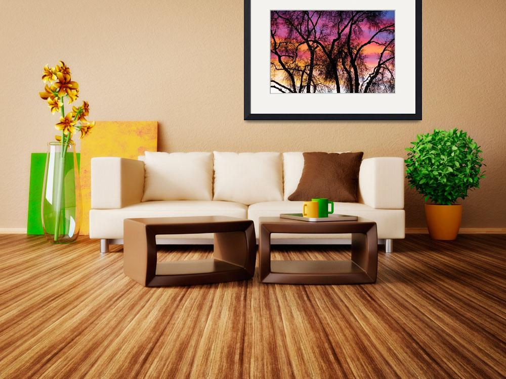 """""""Colorful Silhouetted Trees 27&quot  (2012) by lightningman"""