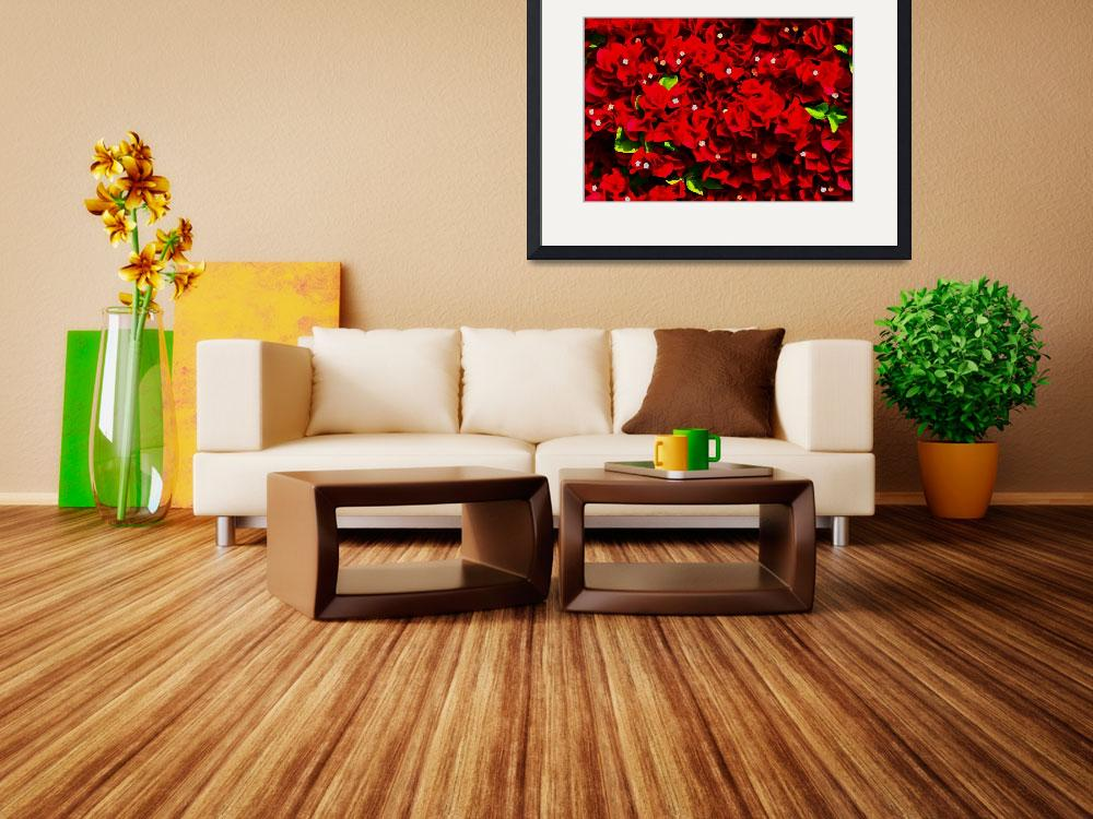 """""""Bougainvillea Wall DigiArt&quot  (2008) by rmccord"""