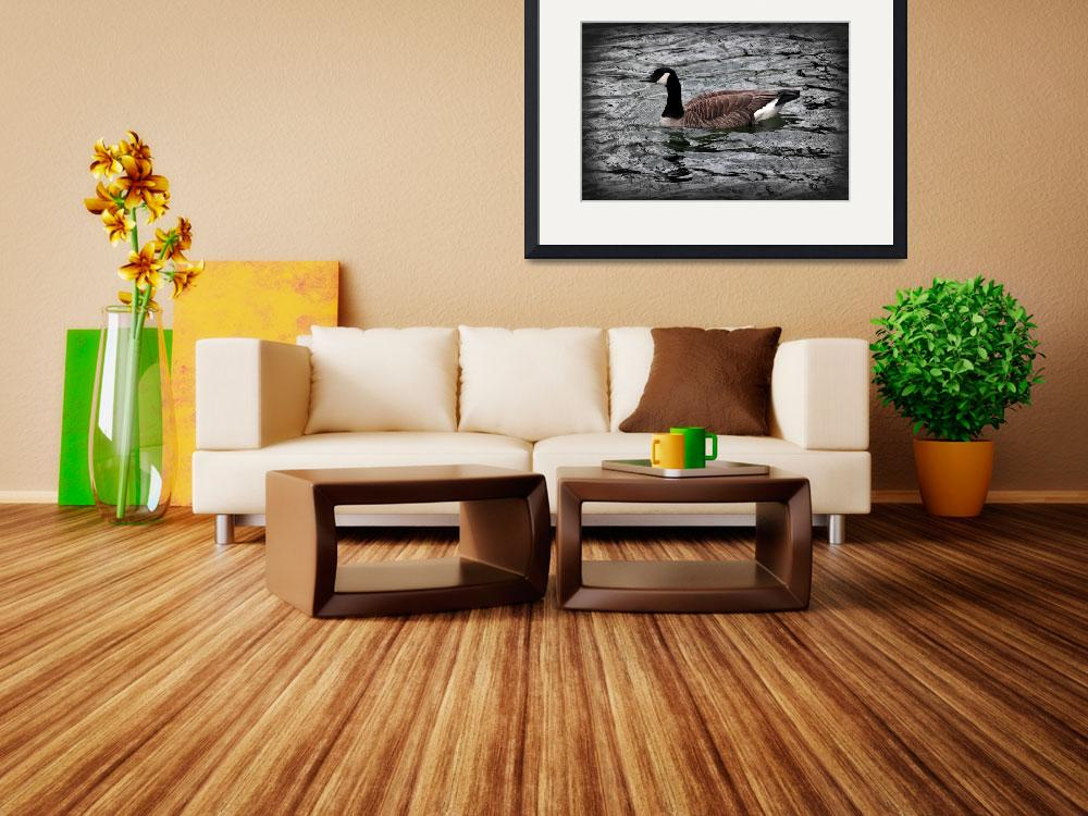 """""""Canada Goose With Vignette&quot  (2016) by KsWorldArt"""