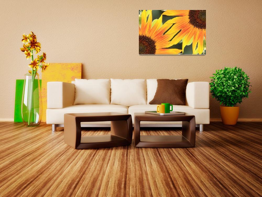 """""""Sunflower On the Corner""""  (2010) by lightningman"""