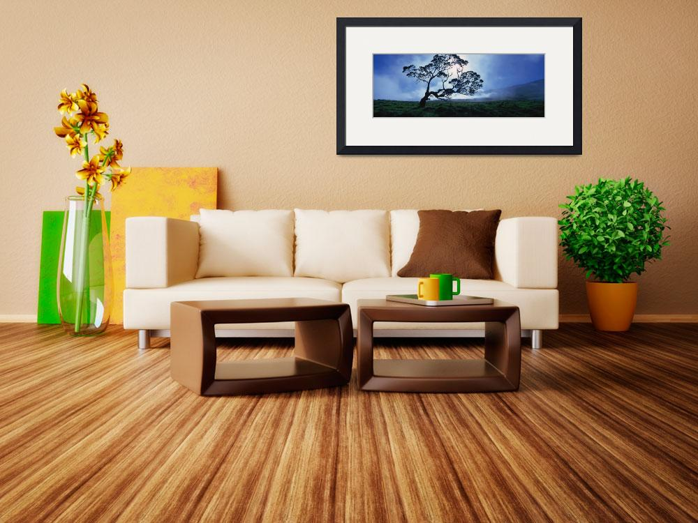 """""""Koa tree on a landscape&quot  by Panoramic_Images"""