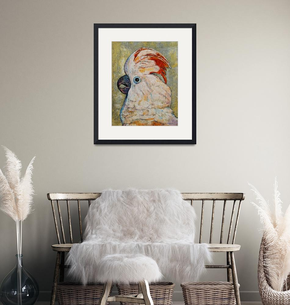 """""""Moluccan Cockatoo""""  by creese"""