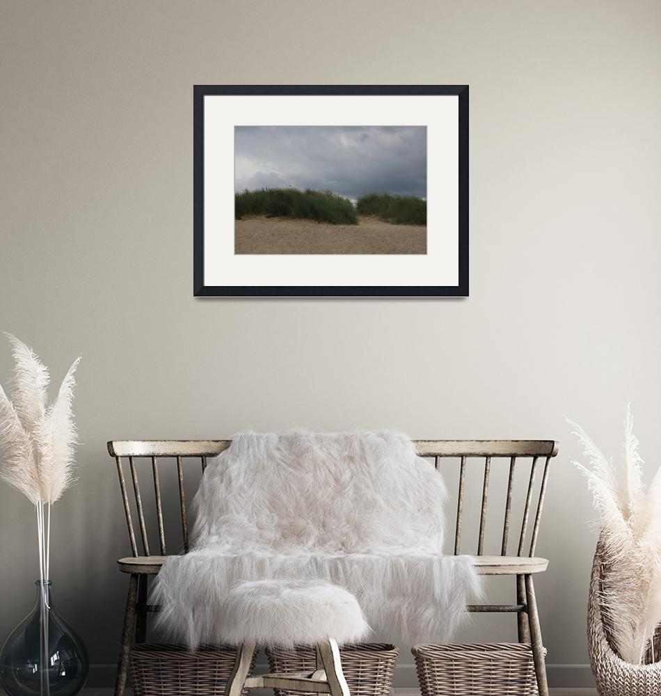 """""""Grassy Dunes""""  (2008) by McElroyImages"""
