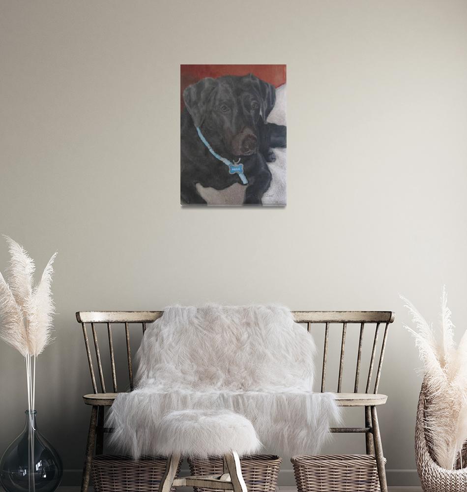 """""""Black labrador Retriever"""" (2012) by Zinastr"""