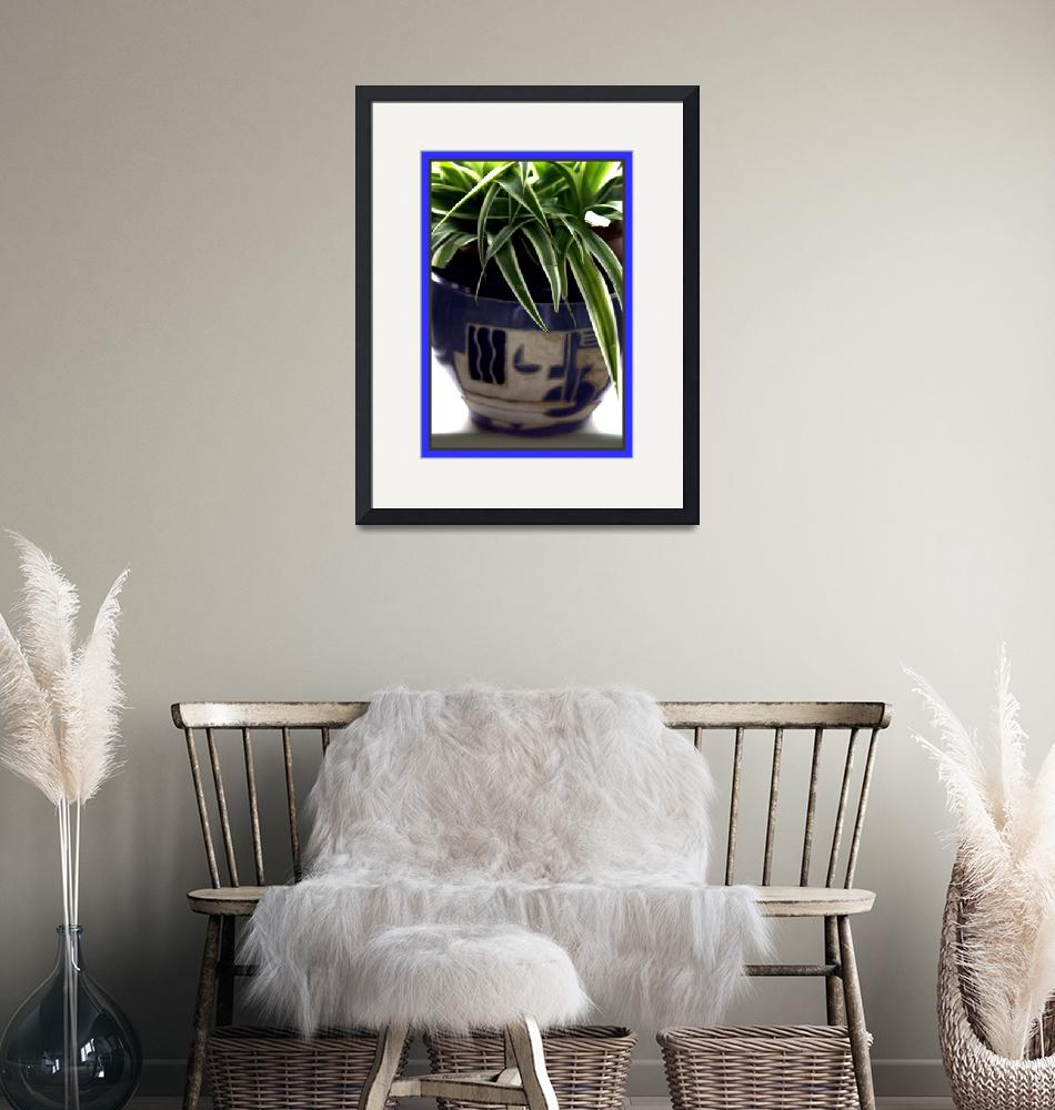 """""""Potted Plant 1""""  by willifindunow"""