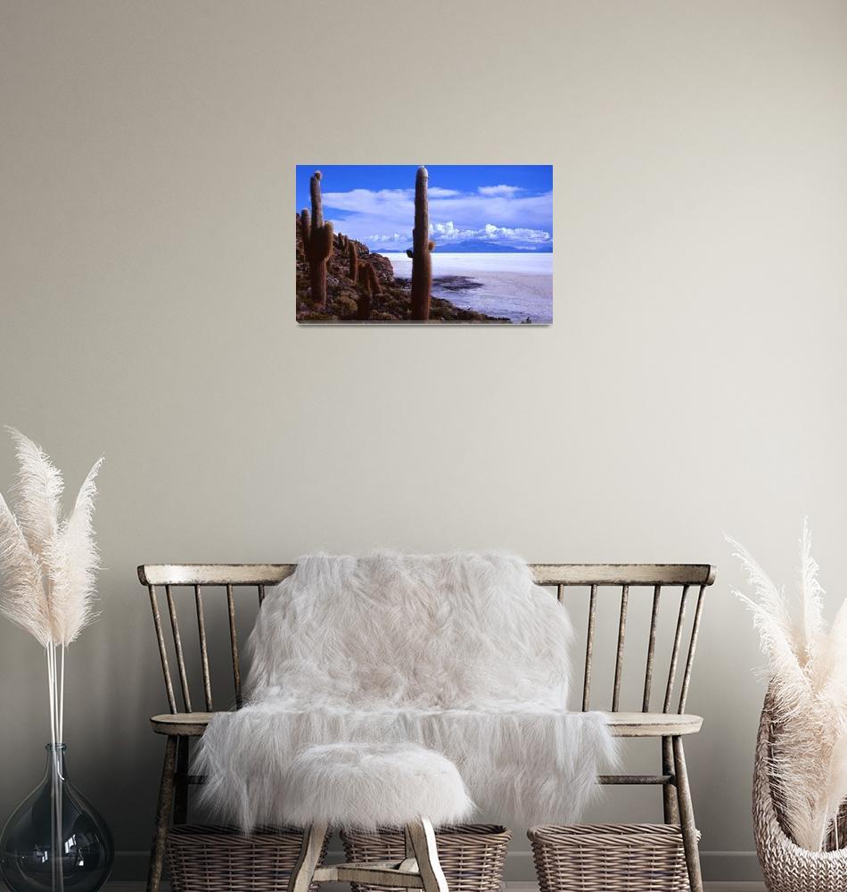 """Salar de Uyuni, Bolivia""  by IanMiddletonphotography"