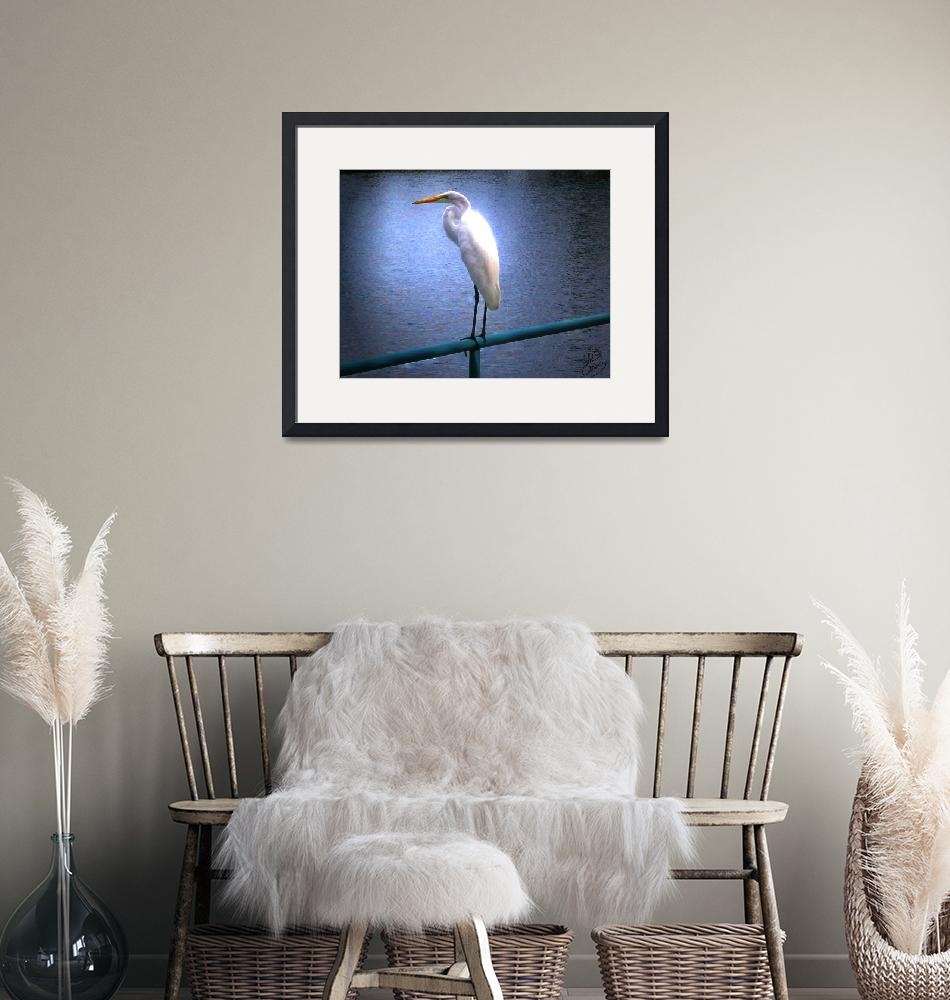 """Egret Glow Portrait""  (2007) by ChrisCrowley"