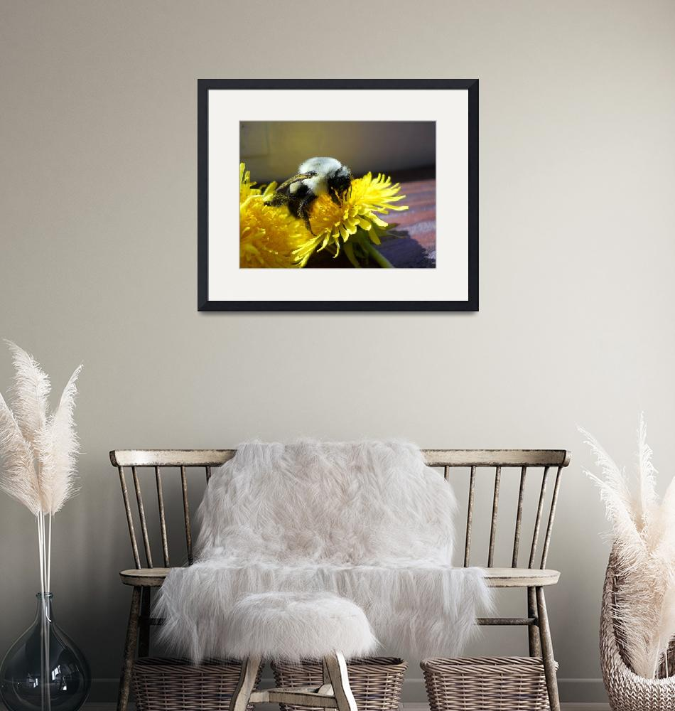 """""""The Bumblebee""""  (2011) by wendymarie71"""