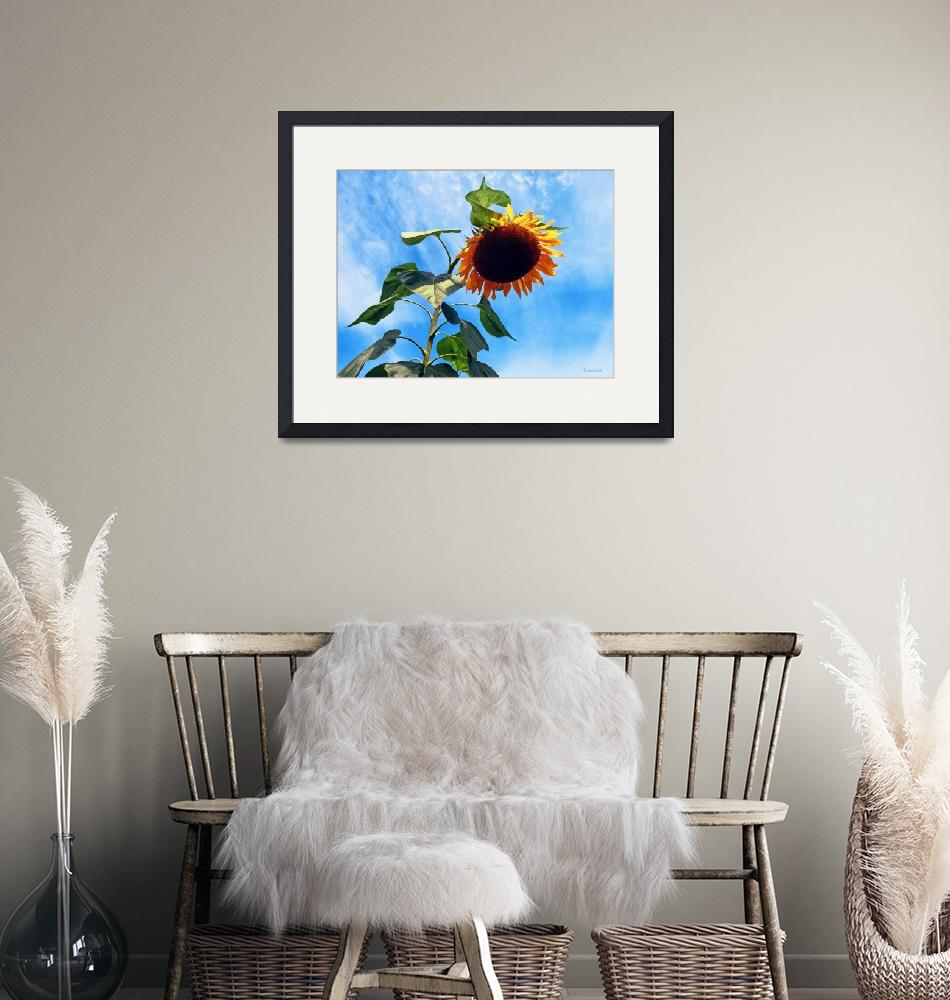 """""""Sunflower and Sky""""  by susansartgallery"""