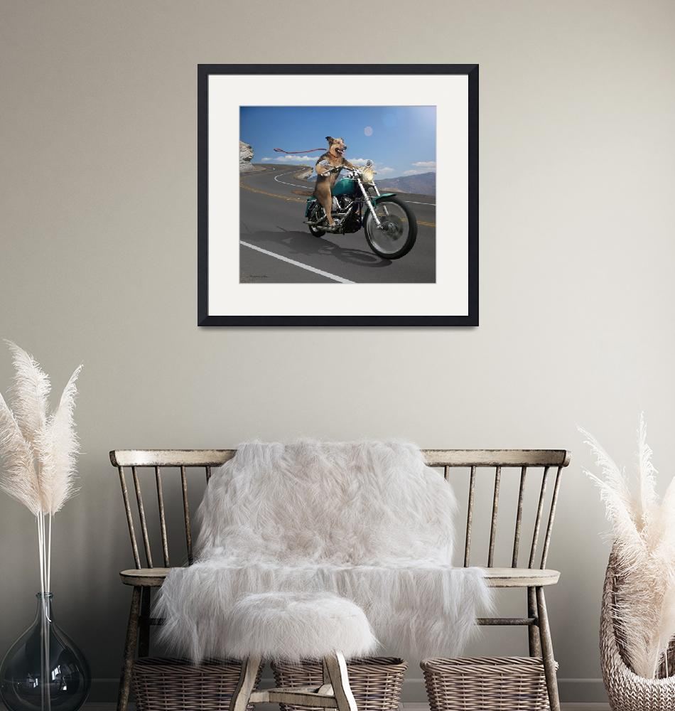 """""""German Shepard Dog Riding a Motorcycle""""  (2010) by StephanieDRoeser"""